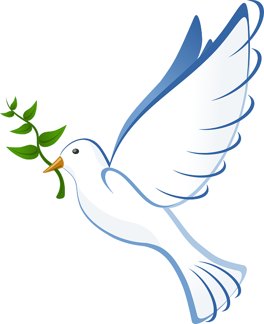 今日の言葉>「戦争をしないという平和の理念は永久に変えてはならない原点。悲惨な戦争の記憶を忘れてはならない」