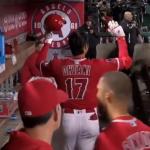 今年は本当にドキドキワクワクさせてくれました。何度見てもすごい!大谷選手の全22本塁打をMLBが公開